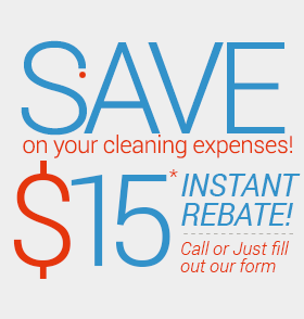 save cleaning expenses